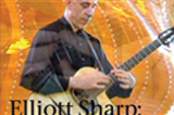 Elliott Sharp: Doing the don